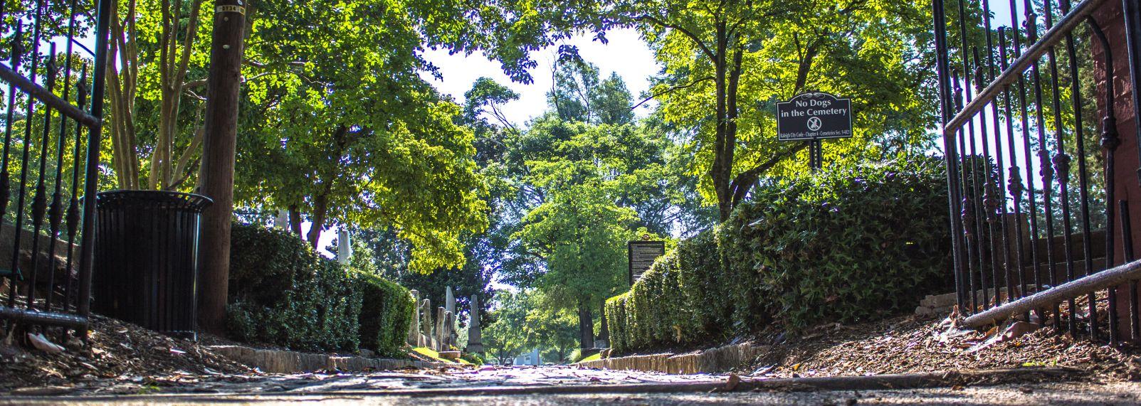 City Cemetery 06-223.jpg