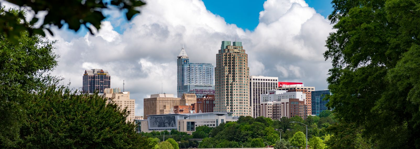 Raleigh Skyline April 2017