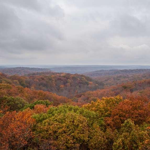 hoosier national forest