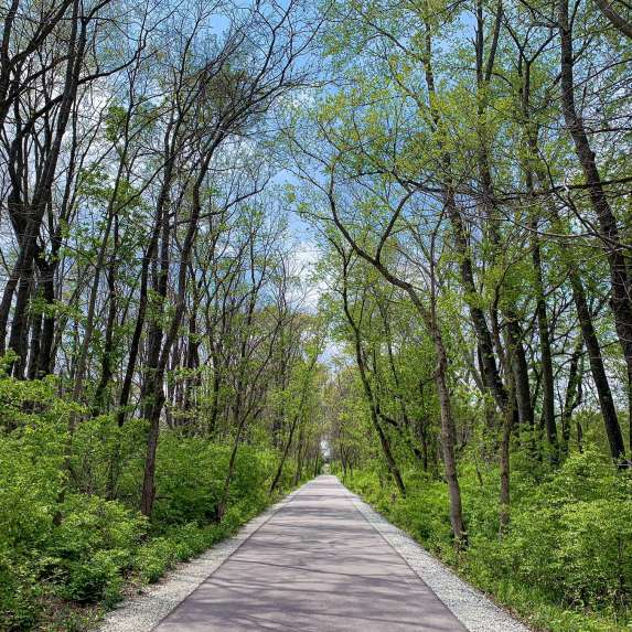 Limestone Greenway during spring
