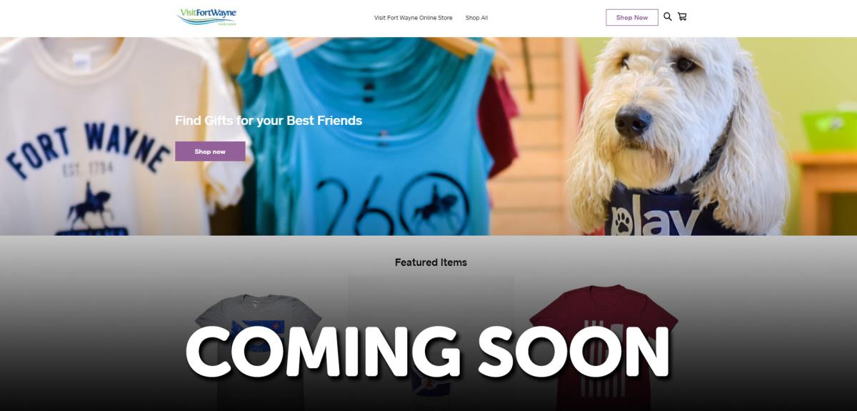 2020 Web Store Preview