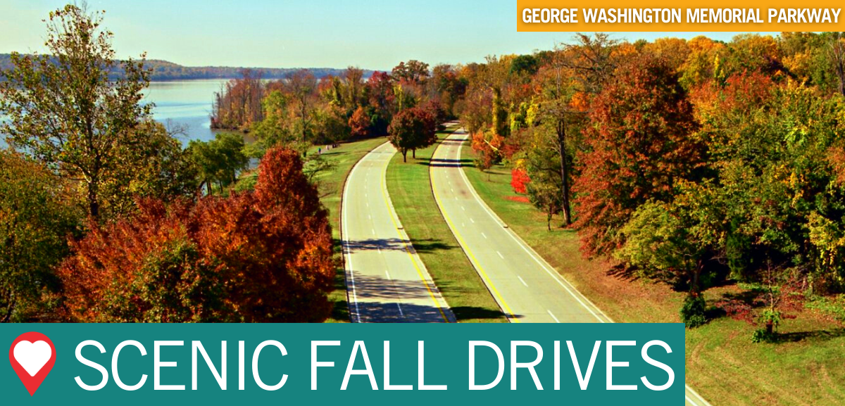 Love Every Mile Scenic Fall Drives Button
