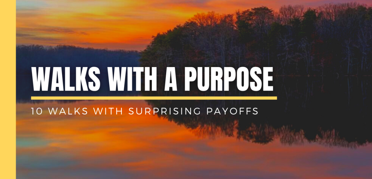 Walks with a Purpose