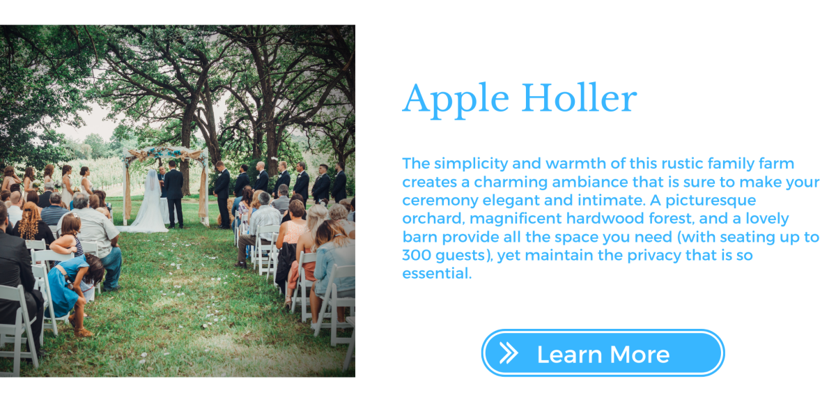 Apple Holler Bio
