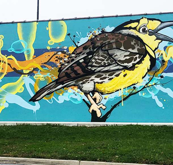Colorful wall mural of a bird perched on a branch in Overland Park