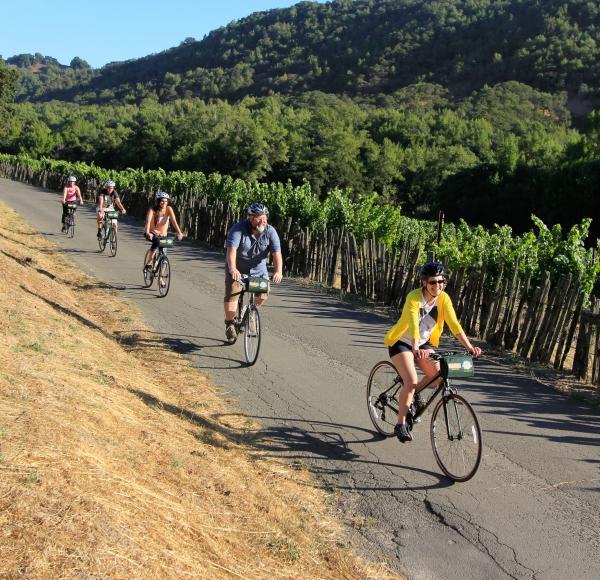 Napa Valley Bike Tours