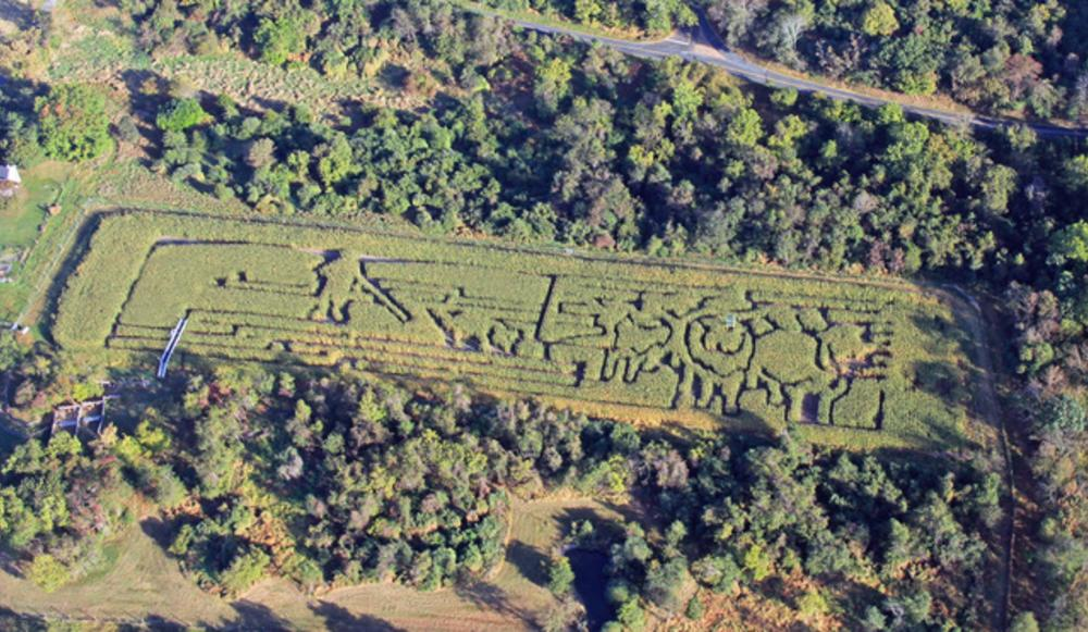 An aerial view of Howell Farm Corn Maze