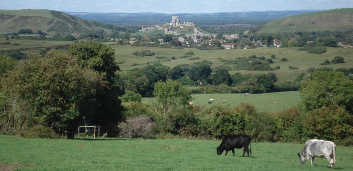 Views of Corfe Castle from Kingston village in Dorset