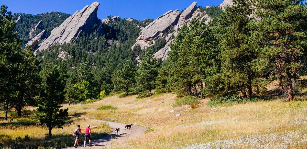Flatirons hiking with dogs