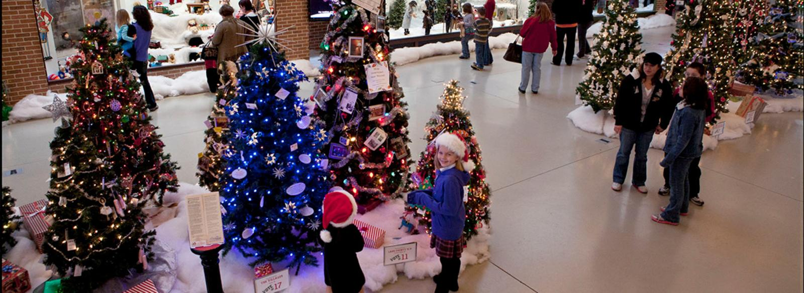 A Christmas Story Comes Home trees
