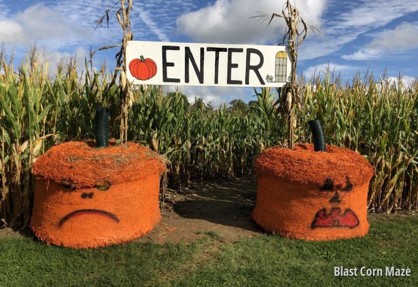 Blast Corn Maze