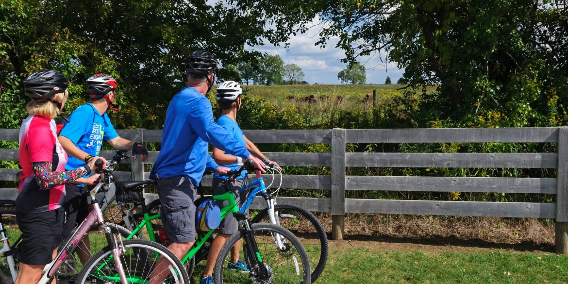 A group of road cyclists stop to watch a herd of Bison grazing at Battelle Darby Creek.