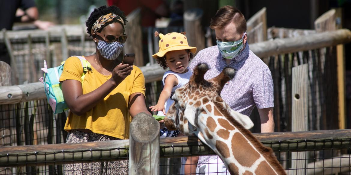 Guests wearing masks petting a giraffe at the Columbus Zoo and Aquarium