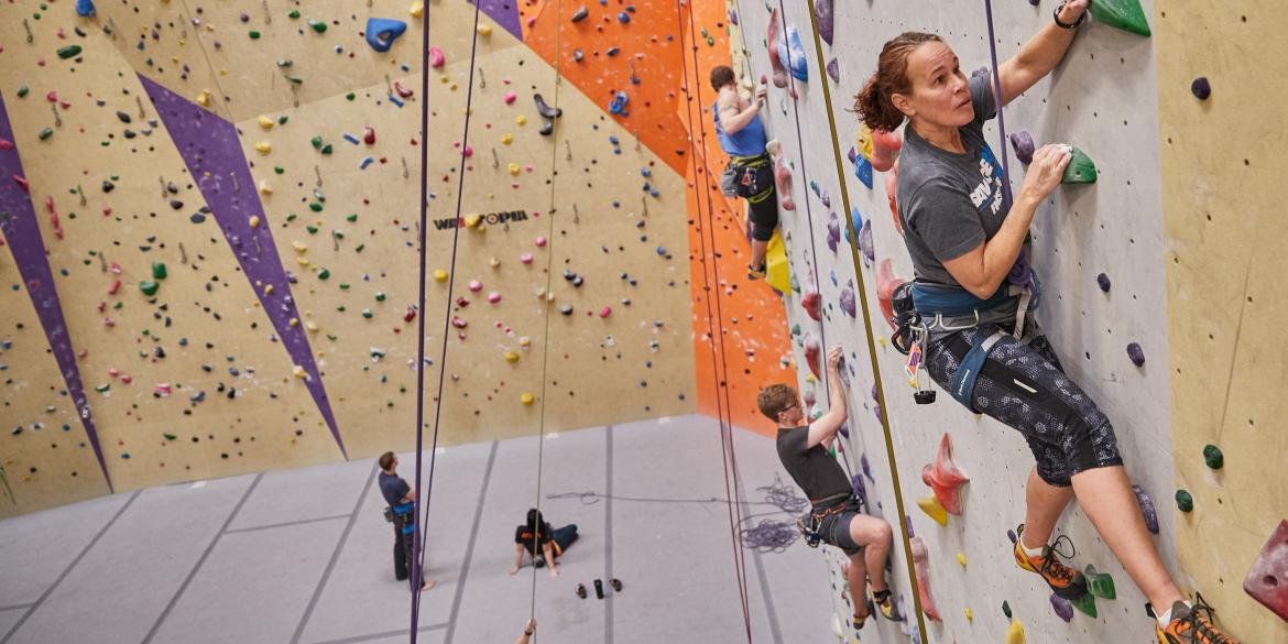 People climbing wall at Vertical Adventures climbing gym