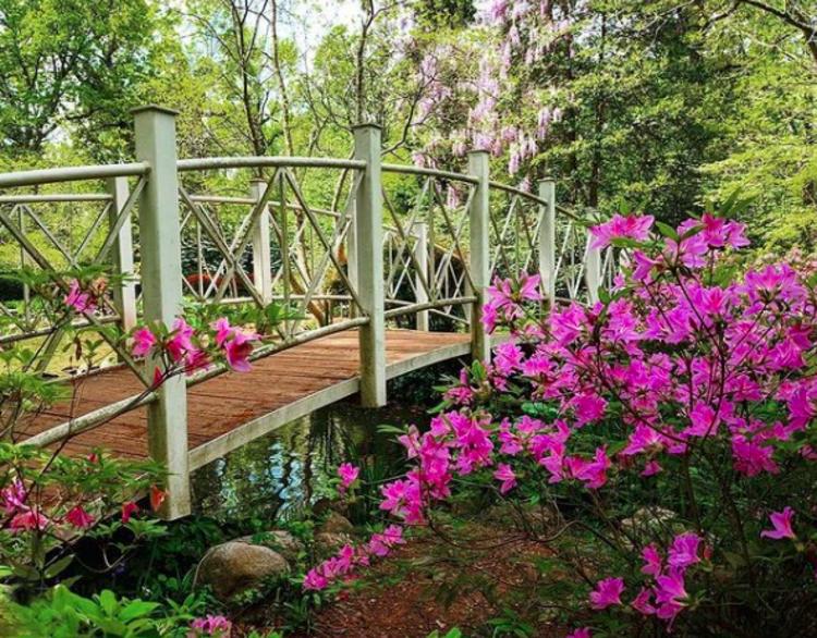 Sayen Botanical Gardens in Princeton, NJ