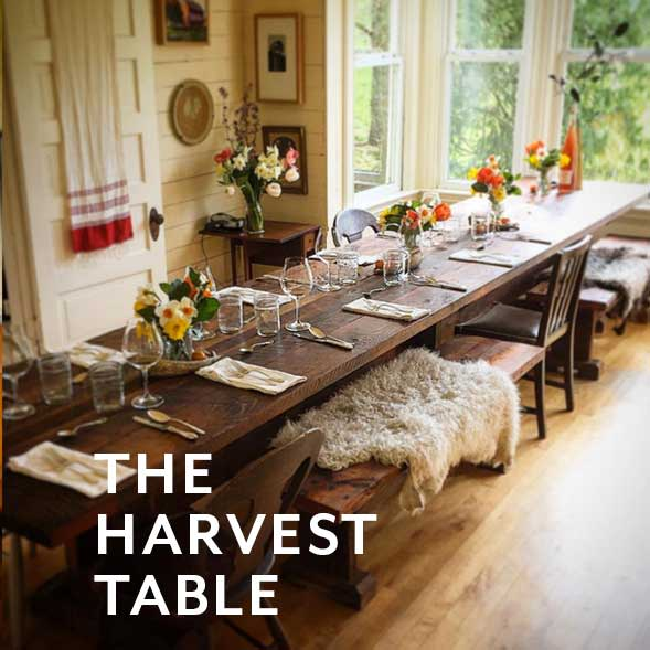 The harvest-table