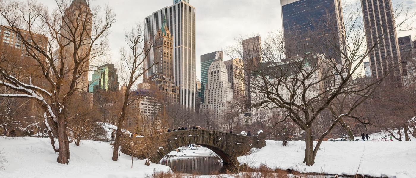 Central Park, winter, snow