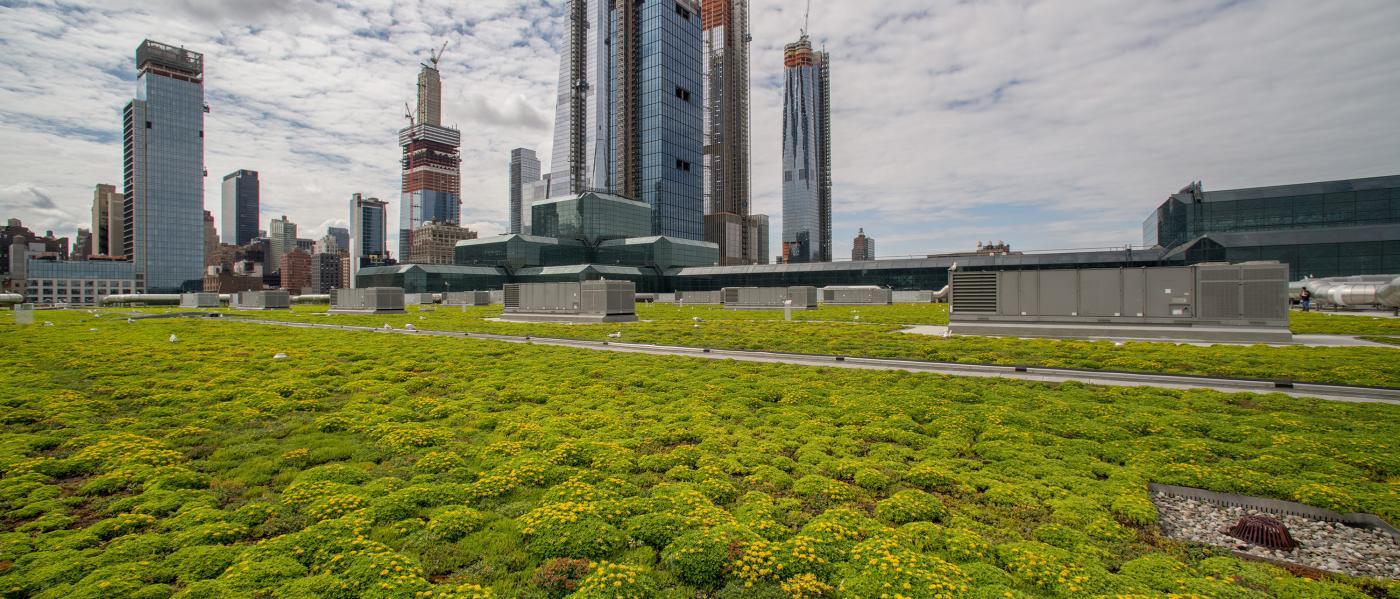 javits, green roof