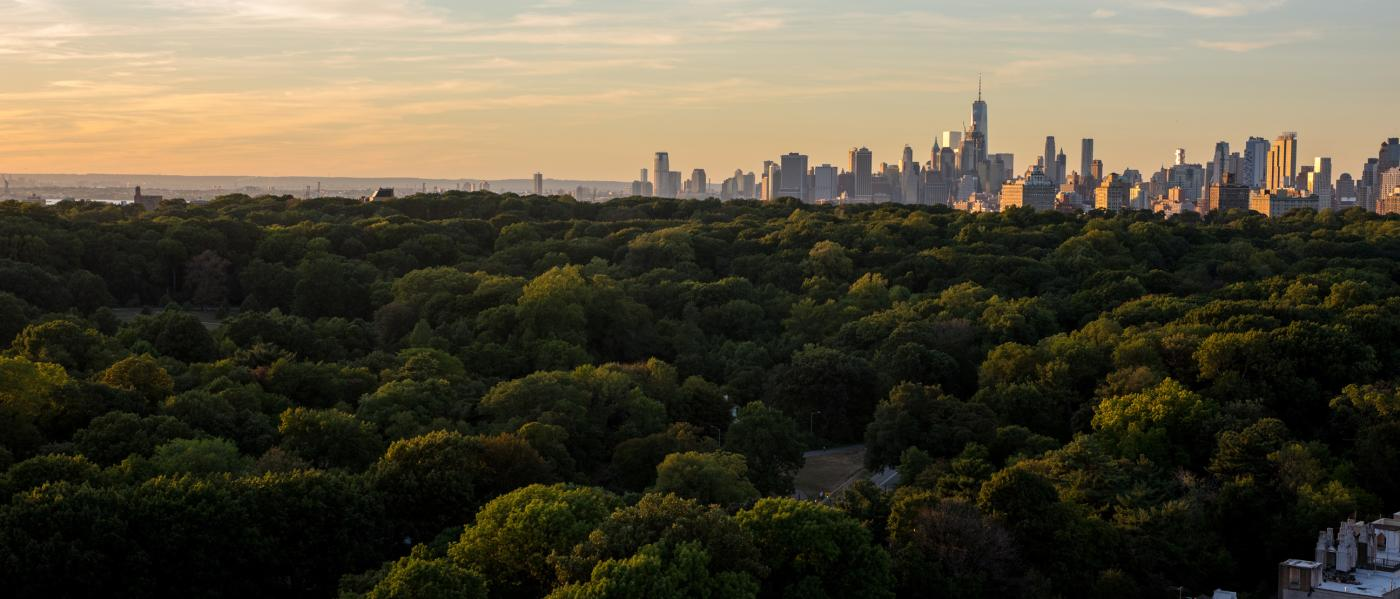 Prospect Park Skyline (Photo: Julienne Schaer)