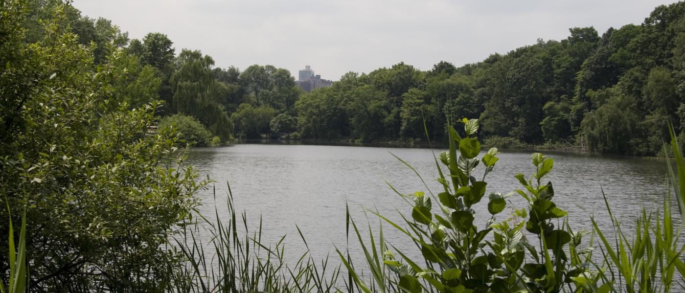 Van Cortland Park