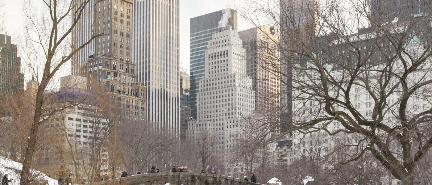 Winter-Central-Park-Tagger-Yancey