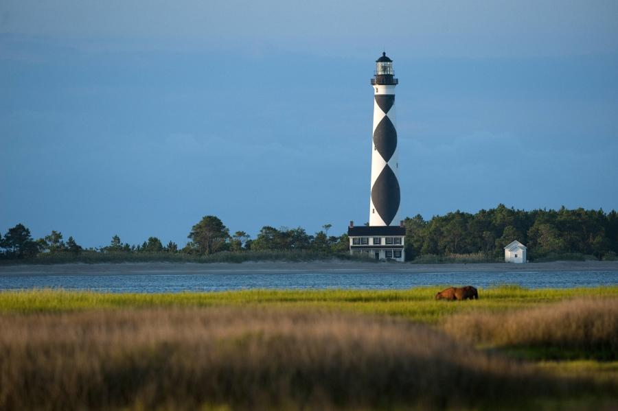 Cape Lookout - Lighthouse with Horse