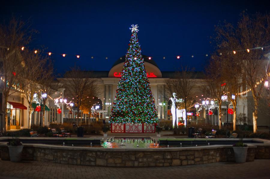 Huntsville Bridge Street Tree 2018