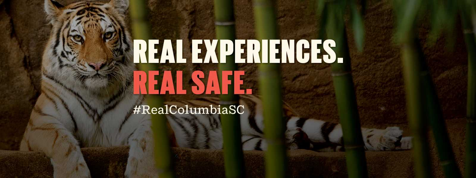 Real Experiences. Real Safe.