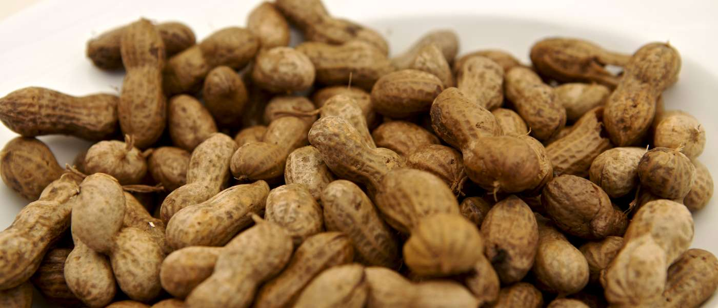 Tailgating for South Carolina Gamecocks Football - Boiled Peanuts
