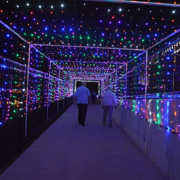 Couple Walking Through Sugar Land Holiday Lights at Constellation Field