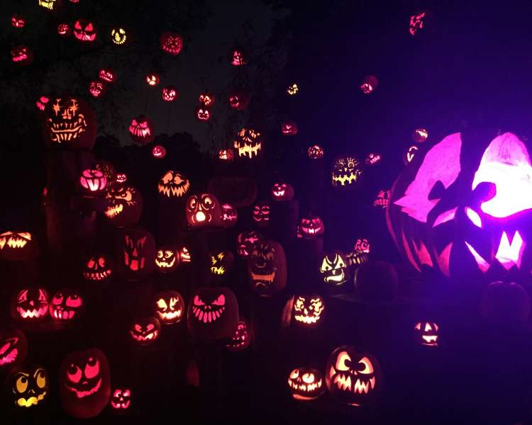 Carved pumpkins glowing in the dark for the Jack-o-Lantern Spectacular in Rhode Island
