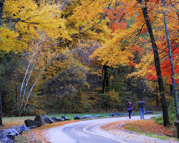 Two people walking through Lincoln Woods.
