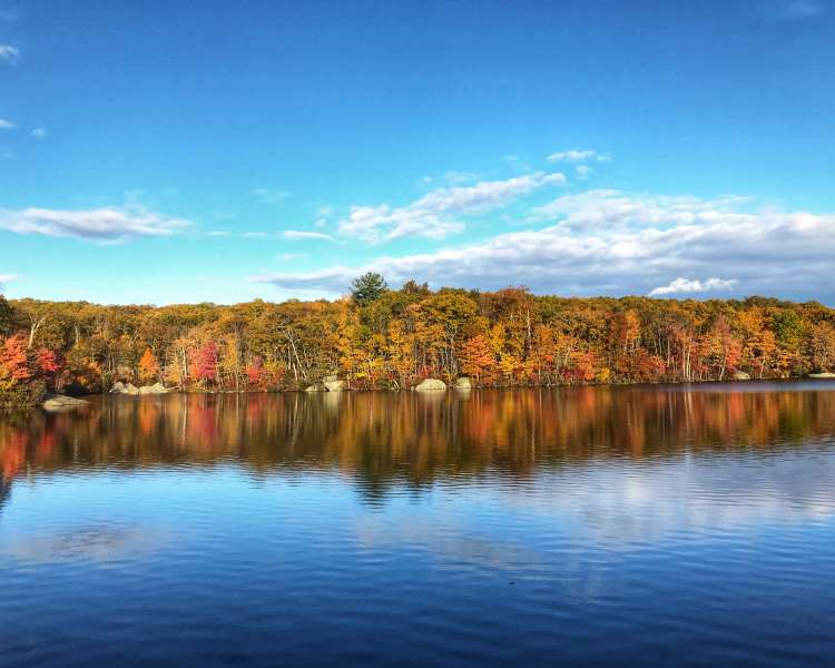 Colorful fall foliage across a reflective pond on a clear day.