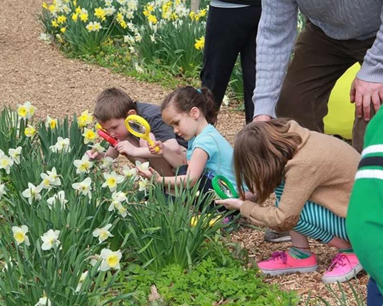 Blithwold Family Nature Discovery Walk