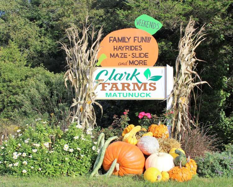 Clark Farms Sign