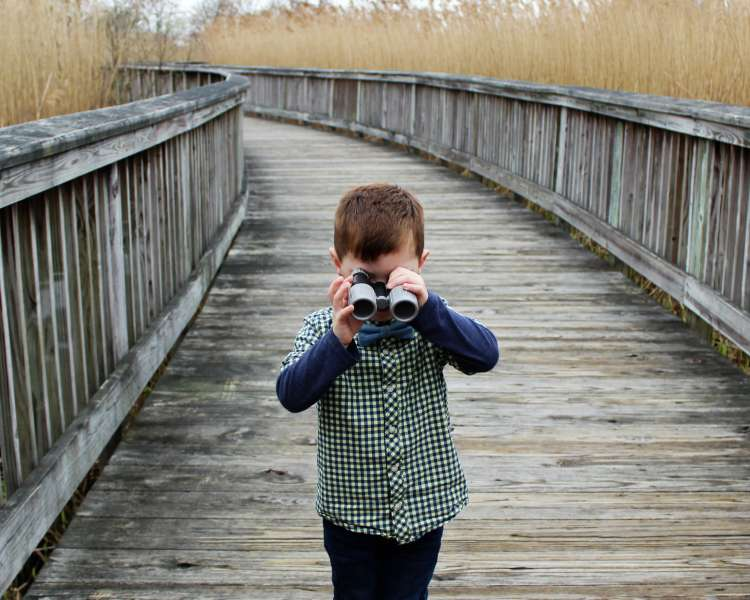 Boy with binoculars on the boardwalk over the marsh in Rhode Island