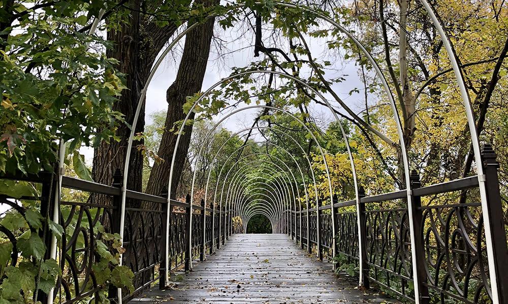 A bridge carves its way through Olbrich Botanical Gardens in Madison, WI