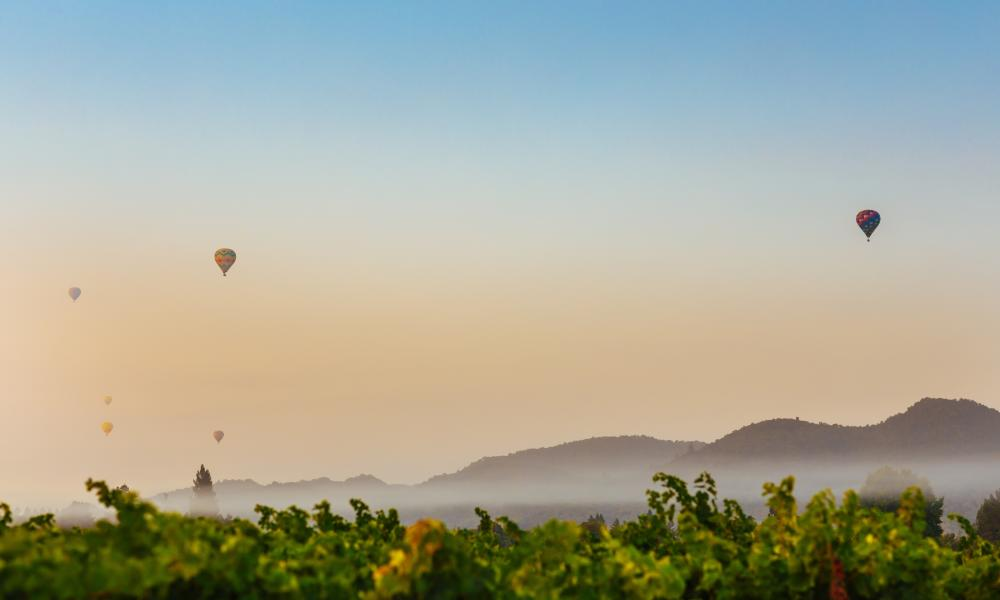 6 Secret Things to do in Napa Valley – from a Local