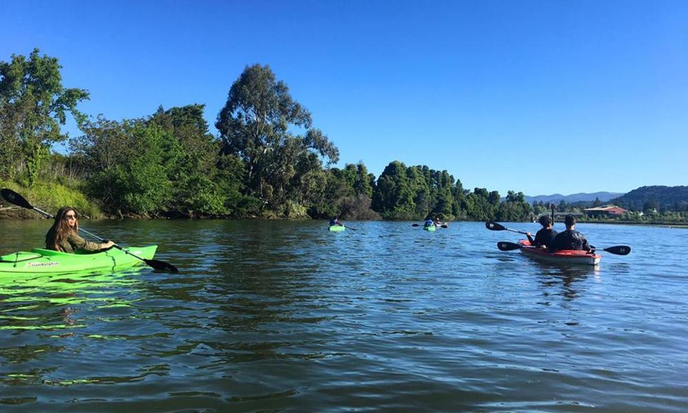 Kayaking the Napa River