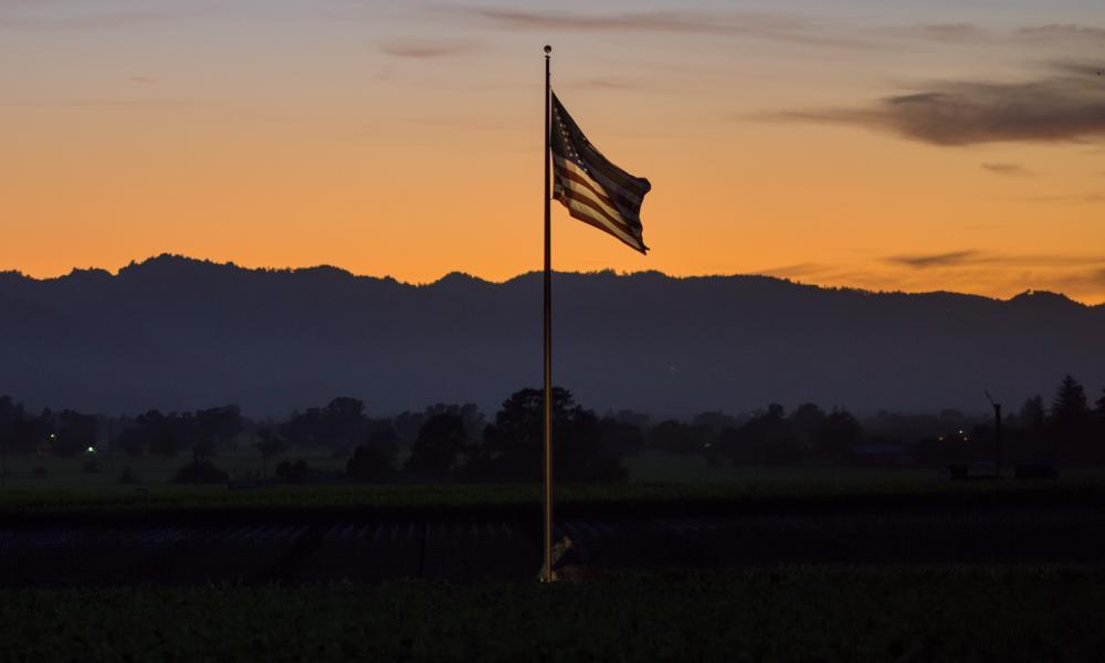 American Flag in Vineyard