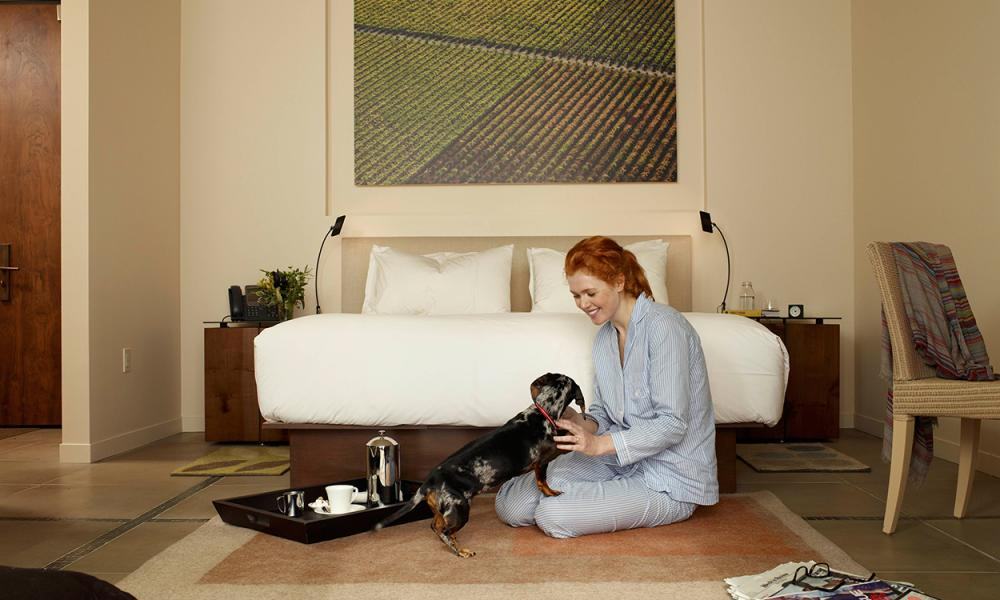 Pet-Friendly Hotels in Napa Valley – Bardessono