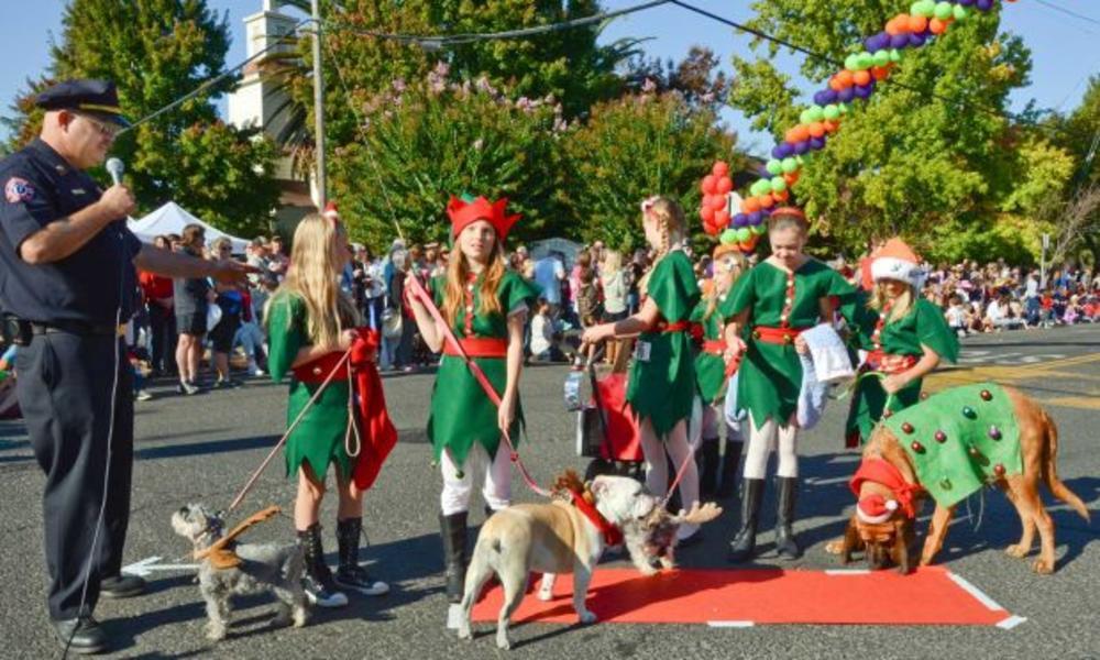 Pet Parade 2013