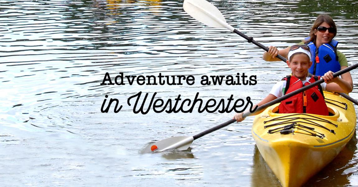 Things To Do In Westchester Today >> Events Calendars