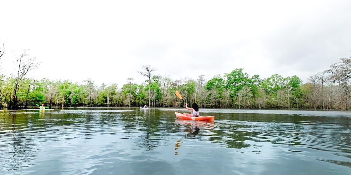 A lone visitor kayaks through the waters of Big Thicket near Beaumont.