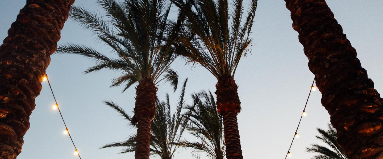 dating in palm desert ca