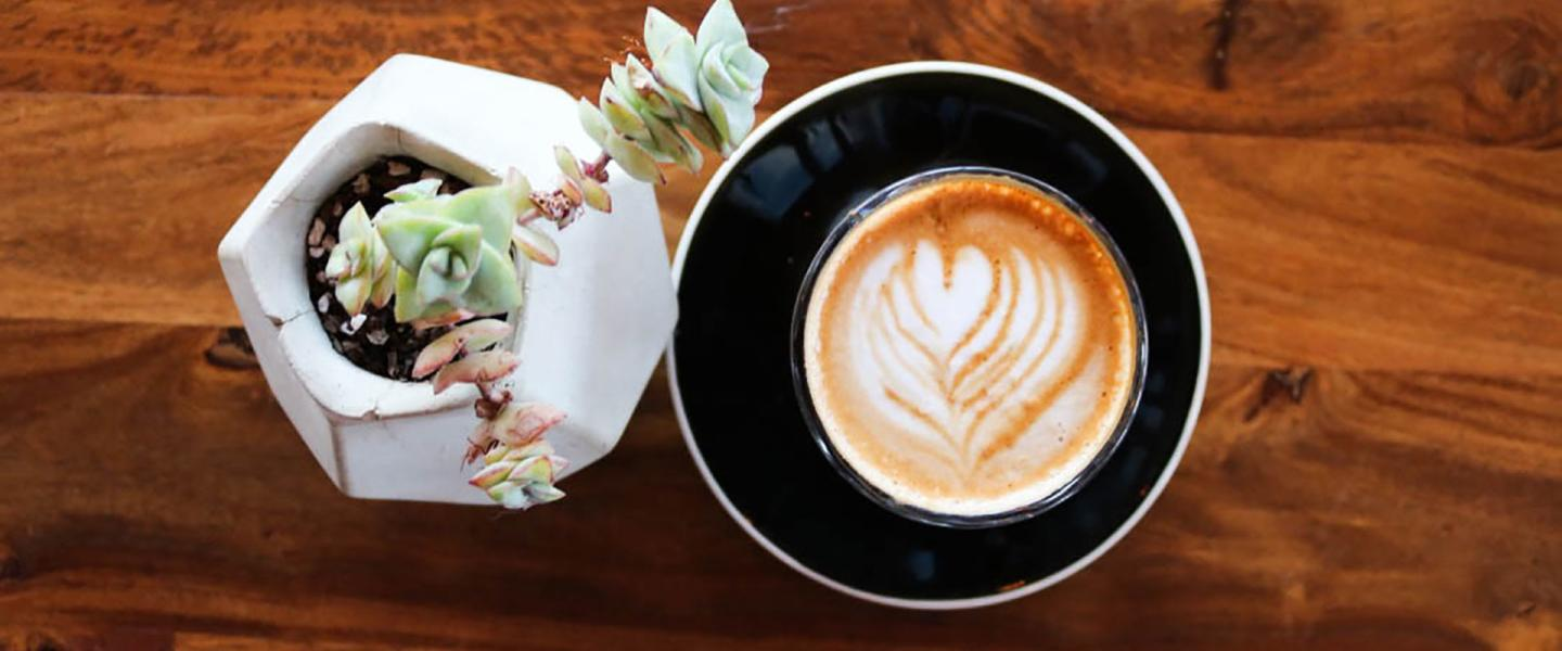 Discover The Best Coffee Shops In Greater Palm Springs