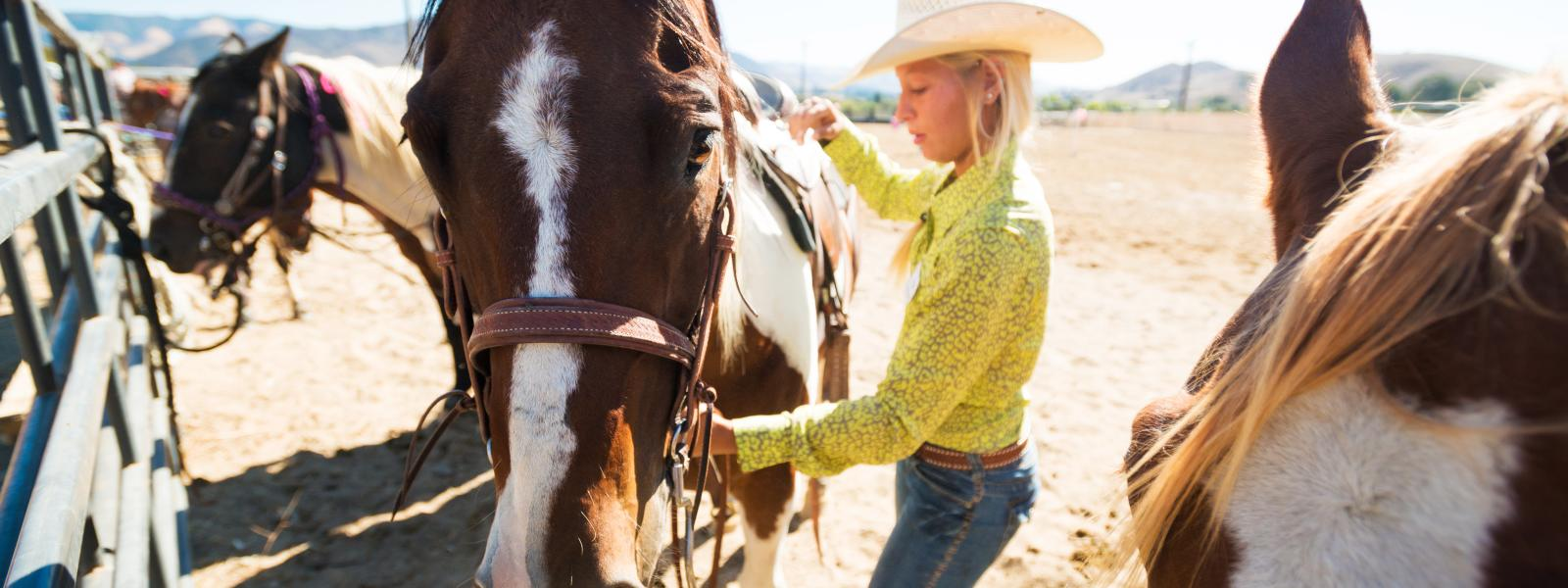 A woman preparing horses for a group ride