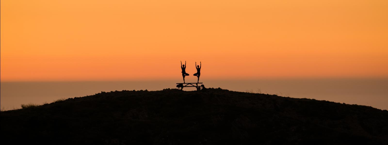 Yoga MDO 1