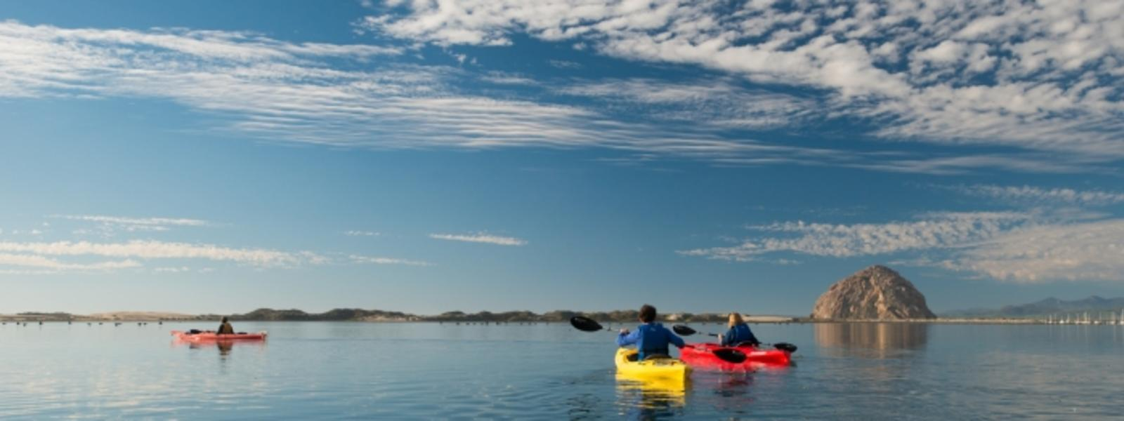 Kayakers in the water of Morro Bay in SLO CAL