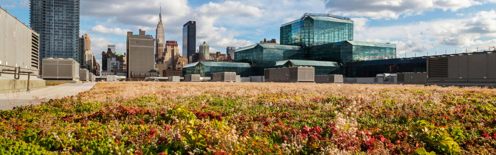 Javits Center, Roof, Green Roof